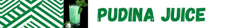 Pudina Juice