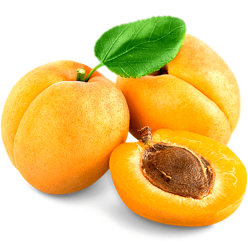 apricot meaning in hindi